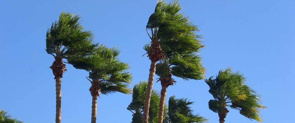 Wind Mitigation Inspection Services