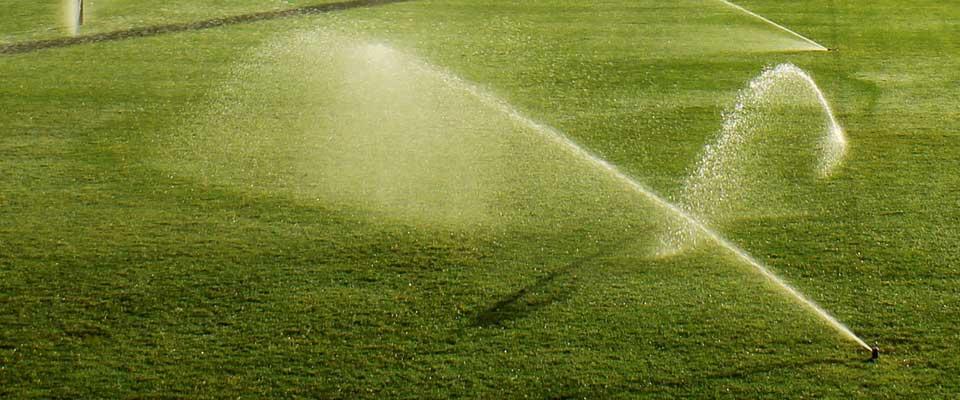 Sprinkler System Irrigation Inspections