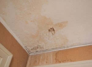 common places for water damage
