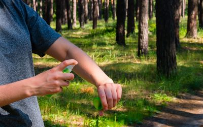 5 Ways to Repel Mosquitoes from Your Property
